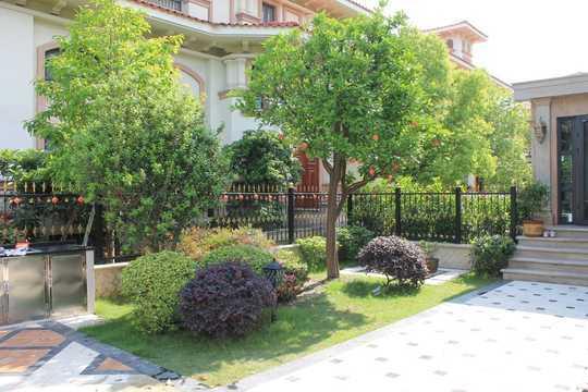 这是庭院入口处的拱形铁艺廊架